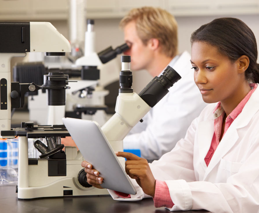 Researchers in lab.