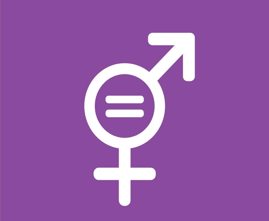 SFC National Gender Conference 2018